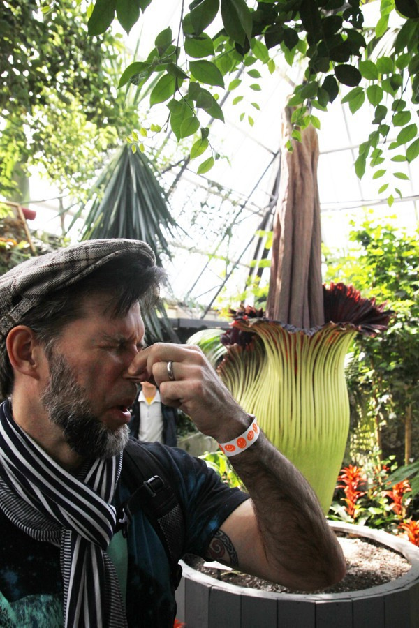 Putrella: The Corpse Flower